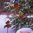 Christmas For the Birds Card by Kathy Weaver
