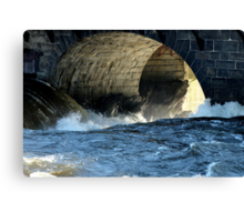 Morning Flood Canvas Print