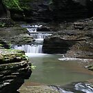 Watkins Glen Falls by Robert Och