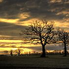 ~ Sunrise over Pillaidland by Christopher Cullen