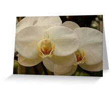 pure and simple Greeting Card