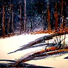 Landscape...On a Snowy Evening by  Janis Zroback