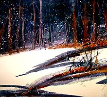 Landscape...On a Snowy Evening by ©Janis Zroback