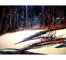 Landscape...On a Snowy Evening Photographic Print