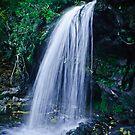 Grotto Falls 2 by Phillip M. Burrow
