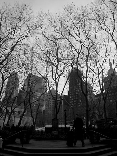 city trees. union square, nyc by tim buckley | bodhiimages