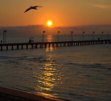 Sunset by Kerry  Hill