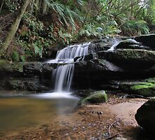 Leura Cascades 13-11-10 by Warren  Patten
