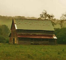 Misty Day at the Barn by Chelei