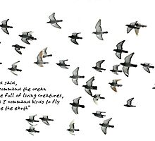 I command birds to fly above the earth... by relicards