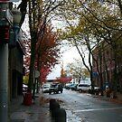 Fall Streets in Bellingham by rferrisx