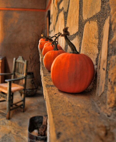 Pumpkins in a Row by Renee D. Miranda