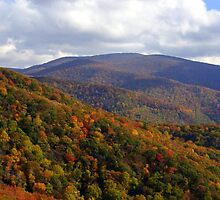 East Tennessee Fall colors by Nancy Greene