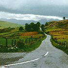 """The Road Less Travelled - Co. Down, Ireland by Edmond J. [""""Skip""""] O'Neill"""