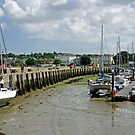 Eastern Side Harbour Arm, Ryde by Rod Johnson
