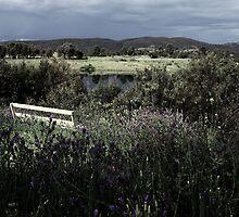 Bench'n Flowers #1a - Nov 2010 by tmac