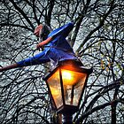 The keeper of the lamp post by Roxy J