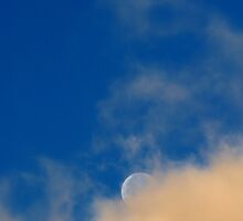 Good Morning Moon... by LindaR