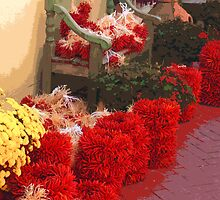 Drying Chilis by Steve Hunter