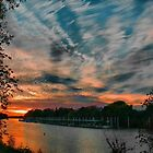 Sacramento Skies by Barbara  Brown