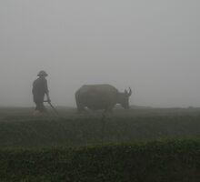 Farmer tending his rice paddies - SaPa - Vietnam by Bubble01