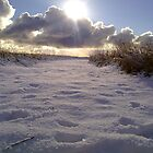 Sunshine & Snowclouds by Merice  Ewart-Marshall - LFA