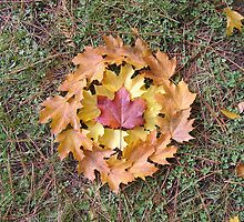 Leaf Wreath - Indian Mary Park by bbbmin