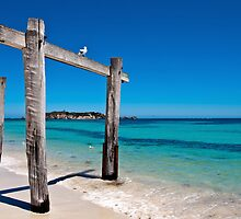Hamelin Bay - West Australia by Andy and Von Quinn