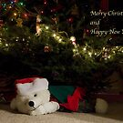Merry Christmas and Happy New Year by Maryna Gumenyuk