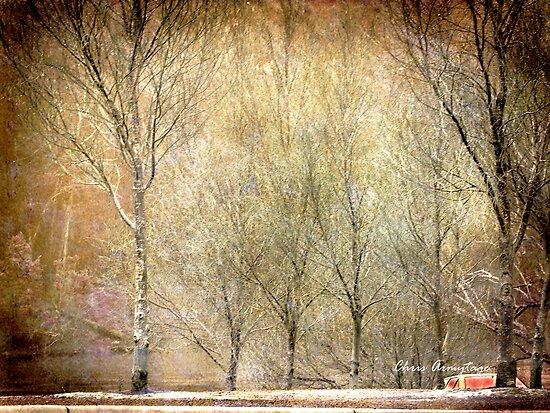 Stillness by Chris Armytage™
