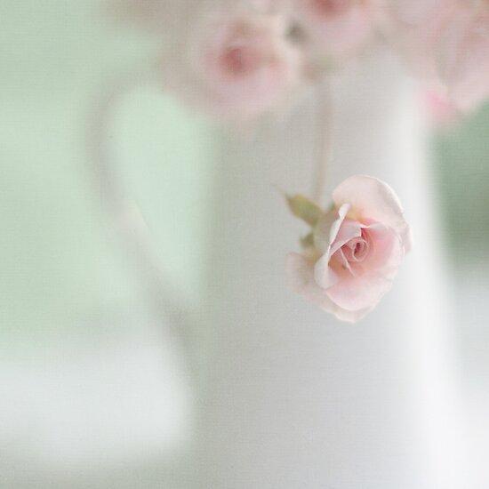 Sweetheart by Jill Ferry