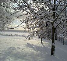 Heavy with Snow by Merice  Ewart-Marshall - LFA