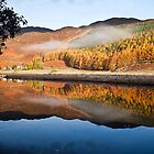 Glen Affric by Martin Slowey