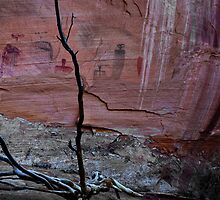 PICTOGRAPHS CANYONLANDS UTAH by Peter Kewley