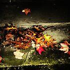 leaves by schadenfreude