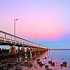 Wellington Point Sunrise by Beth  Wode