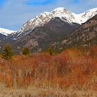 Colorado Rockies by antonalbert1
