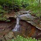 Blue Henn Falls by antonalbert1