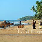 Anjuna Beach by DakiniGoddess