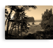 awesome ruby beach, wa, usa Canvas Print