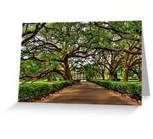 Louisiana Plantation Greeting Card