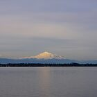 late afternoon mt baker over drayton harbor by dedmanshootn
