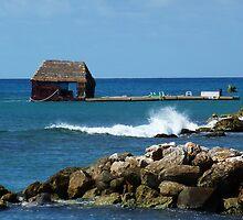 Caribbean house boat by eyeland