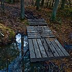 Martha's Footbridge by DeWolf