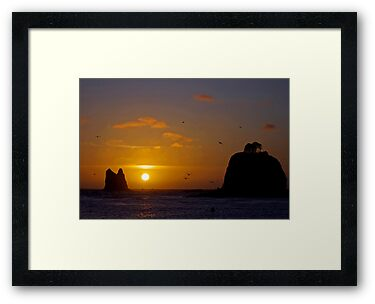 sunset at la push, wa, usa by dedmanshootn