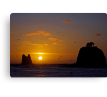 sunset at la push, wa, usa Canvas Print