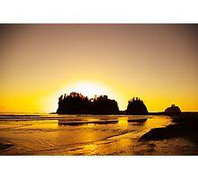 sunset gold, james island, washington, usa Photographic Print
