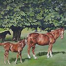 Mares and foals by David McEwen