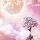 Pink moon by Dominika Aniola