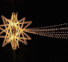 Christmas Star in Siena-Tuscany by Deborah Downes